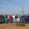 Prairie City SVRA Tree Planting - November 22, 2008 :